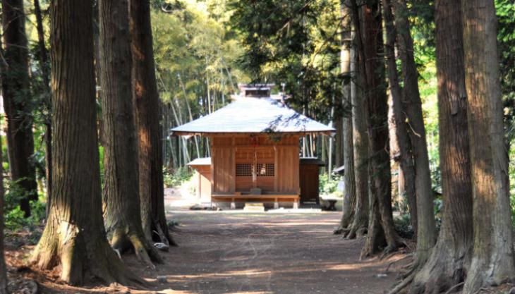淡島神社全景です