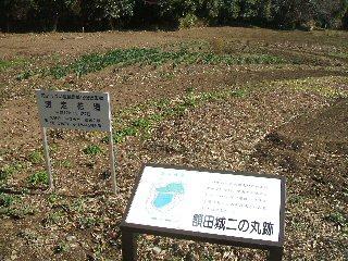 額田城跡の花壇